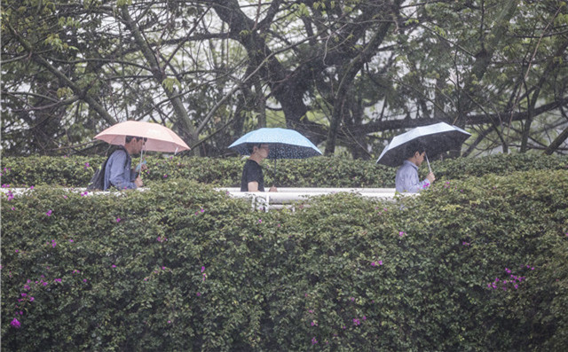 Guangdong to welcome a 3~5℃ drop in temperature this week