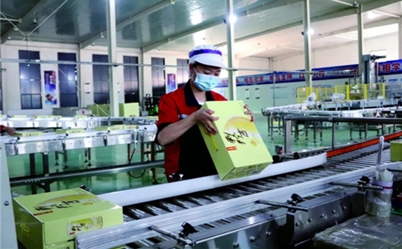 GPHL's poverty alleviation achievements remarkable: Ciningji's sales expected to exceed 500 million